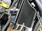 SCREENS: Tail Tidy, Rad Grilles, Fenders & Huggers Daytona 675cc